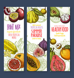 Banners of exotic fresh tropical fruits mix vector