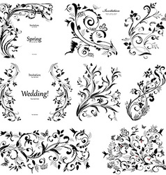 Collection of floral a vintage elements for you vector