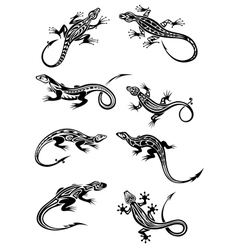 Lizard tattoos with tribal ornaments vector