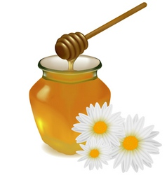 honey with flowers vector image