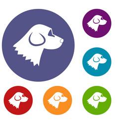 Beagle dog icons set vector