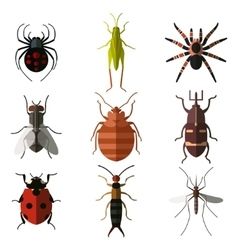 Set of insect flat icons3 vector image vector image