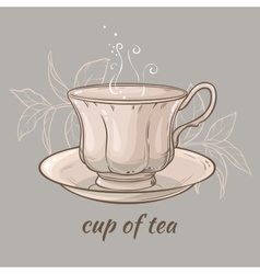 Cup of tea on grey background vector
