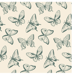 various sketch butterflies vector image