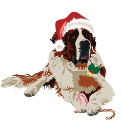 Saint bernard in hat santa claus vector