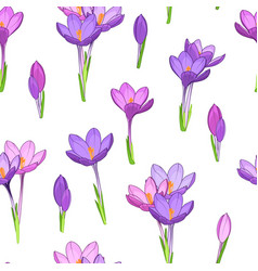 Violet purple crocus flowers seamless pattern vector