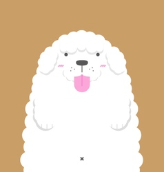 Cute big fat white poodle dog vector