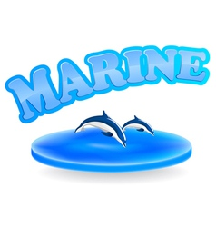 marine dolphins vector image