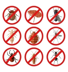 Set of pest insect icons vector image