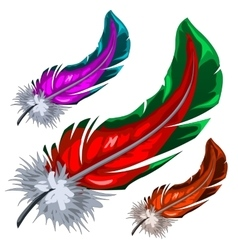 Few colorful magical fluffy feathers isolated vector