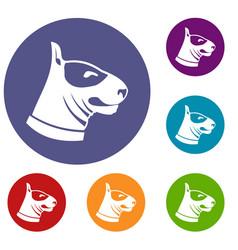 Bull terrier dog icons set vector