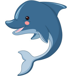 cute dolphin vector image vector image