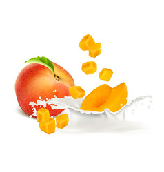 Peach slices falling to milk vector