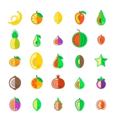 Exotic tropical fresh fruits flat style vector