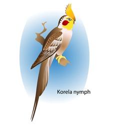 Korela nymph vector image