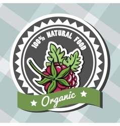 Natural Food 6 vector image vector image