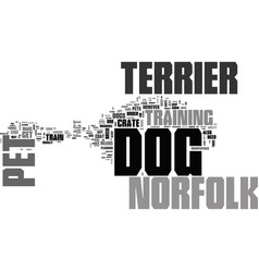 why own a norfolk terrier dog as pet text word vector image