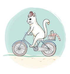 Cat riding a bicycle vector