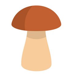 Fungus boletus icon isolated vector