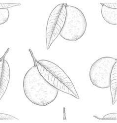 lemon hand drawn outline sketch as seamless vector image