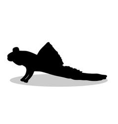 mudskipper fish black silhouette aquatic animal vector image vector image