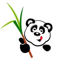 Panda head vector image vector image
