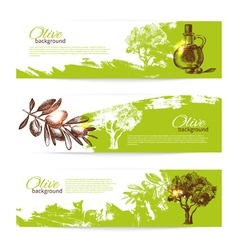 Banner set of vintage olive background vector