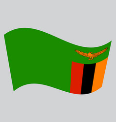 Flag of zambia waving on gray background vector