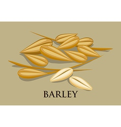 Barley icon vector