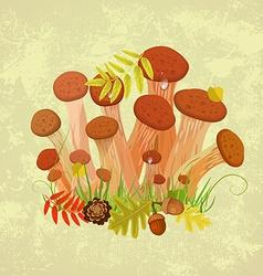 Edible mushroom armillaria for you design vector image vector image
