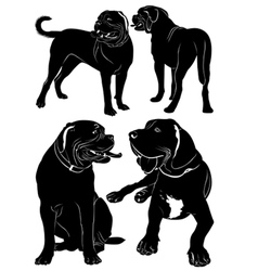 mastiff vector image