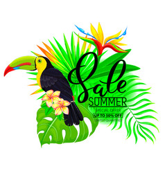 Summer sale bright composition with toucan vector
