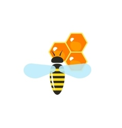 Flying bee pollinating wax honeycombs vector