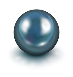 Black pearl vector image vector image