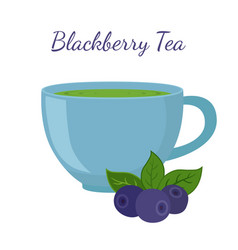 Blackberry tea in cup with berries vector