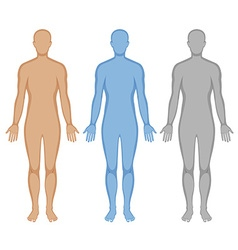 Human body outline in three colors vector