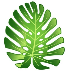 leaf plant monster vector image