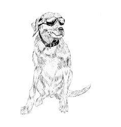 Dog with eyeglasses vector