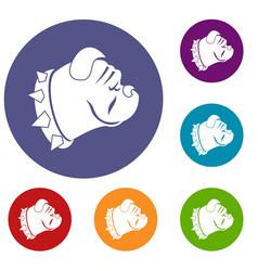 Bulldog dog icons set vector