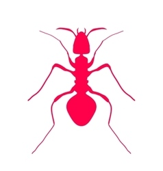 Red silhouette of ant logo design vector