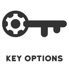 Key options flat icon with caption vector