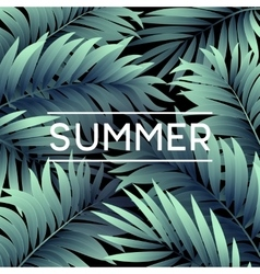 Summer tropical background of palm leaves vector