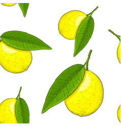 lemon hand drawn colored sketch as seamless vector image vector image