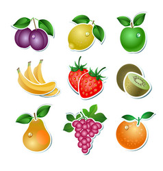 Set of fruit vector