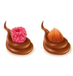 Chocolate splash design with raspberry hazelnut vector