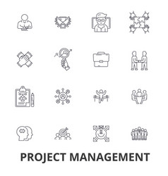 project management project plan consulting vector image vector image