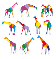 Set of colorful silhouettes of giraffes vector