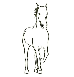 Hand drawn horse vector