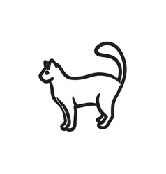 Cat sketch icon vector
