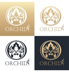 Calligraphic design element golden logo vector
